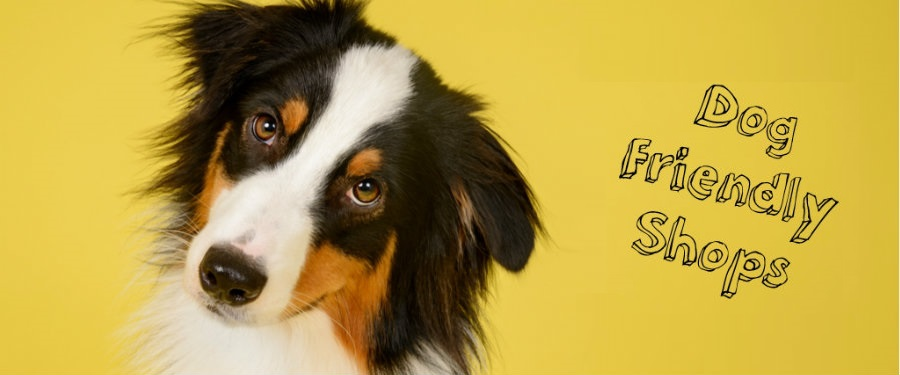 We're dog friendly! | Drake Circus Shopping in Plymouth | Shops